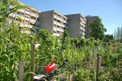 Connaissez vous la derni re tendance en ville c est le for Jardin urbain green bar