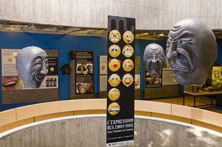salle du muséeum